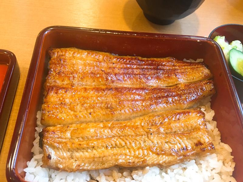 http://www.sugiyama1904.co.jp/ja/blog/archives/20180726-2.JPG