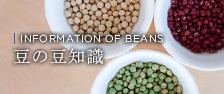 豆の豆知識